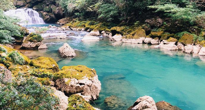 贵州茂兰国家级自然保护区.jpeg